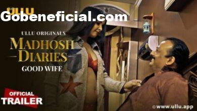 Madhosh Diaries ( Good Wife ) Web Series Cast, Release Date, Actress Names & Watch Online